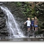 Waterfalls Bushkill 1