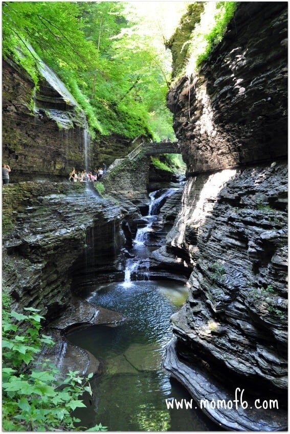 Watkins Glen State Park Momof63 Summer Camp At Home Field Trip: State Parks!