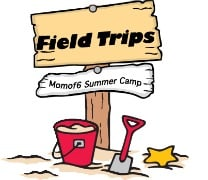 Summer Camp at Home Field Trips