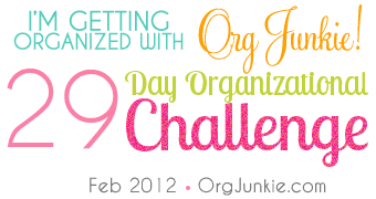 OrgChallenge Teal2 The Declutter Your Life Challenge: Working Towards An Organized Basement!