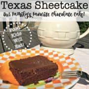 Texas Sheetcake Lg Sq