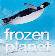 Must Watch Show: Discovery Channel's Frozen Planet