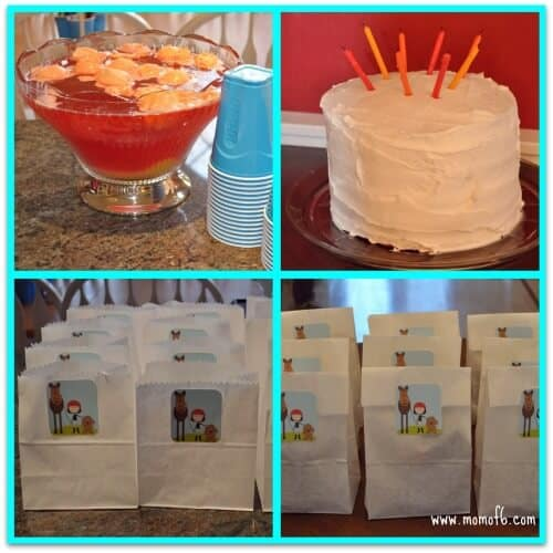 Puppy and Pony Party cake Punch Favors 8 Year Old Girls Birthday Party Idea: Ponies and Puppies!