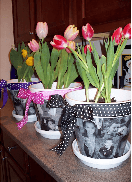 Mod Podge Photo Flower Pots Links to Love: Great Ideas to Celebrate Mothers Day!