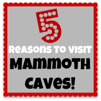 5 Reasons to Visit Mammoth Caves with Kids!