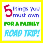5 Things You Must Own for a Family Road Trip