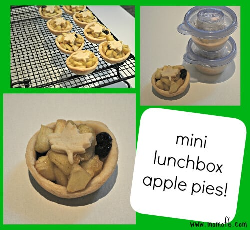 Mini Lunchbox Apple Pies Beyond Bologna: Time Saving School Lunch Tips & Recipe for Mini Lunchbox Apple Pie!