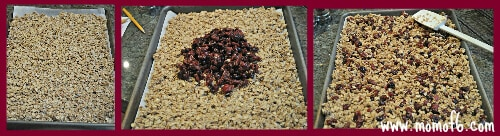 Granola Baked Homemade Dried Cranberry Granola! {I Pinned it and I Tried It!}