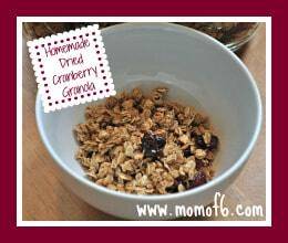 Homemade Dried Cranberry Granola