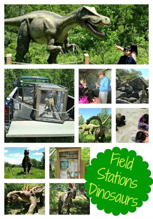 Great Field Trips for Summer Camp at Home!