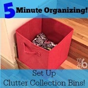 All it takes is 5 minutes and a few strategically placed clutter collection bins to help us become more organized!