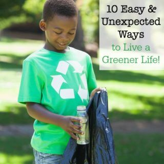 10 Easy & Unexpected Ways to Live a Greener Life!