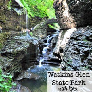 Watkins Glen State Park with Kids!