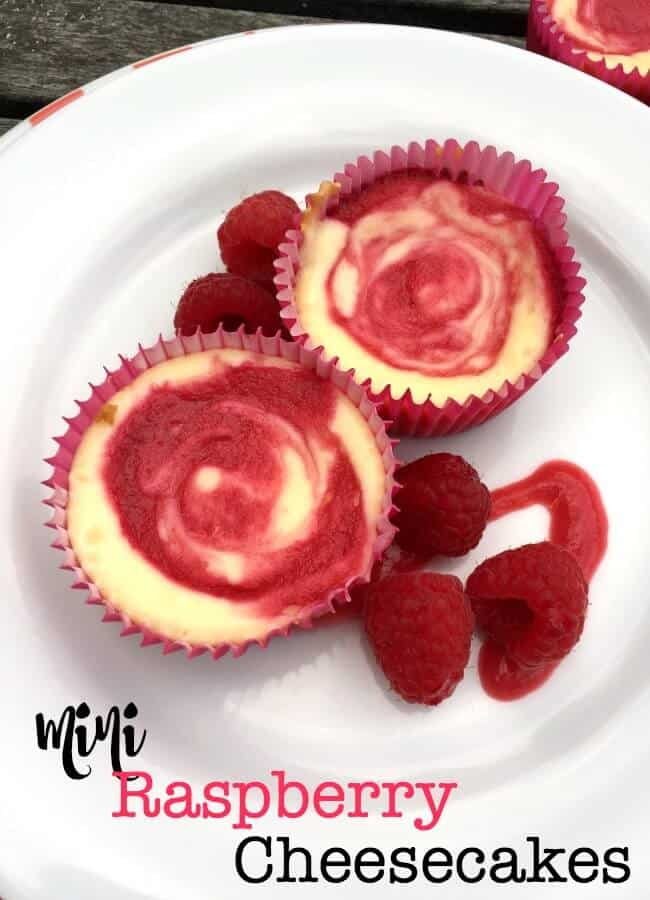 Mini Raspberry Cheesecakes, shared by Mom of Six at The Chicken Chick's Clever Chicks Blog Hop